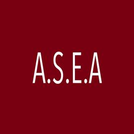 ASEA Sonorisation