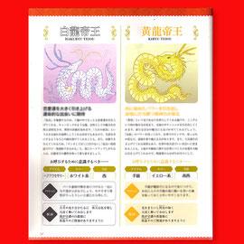 龍の神様とつながる本 カットイラスト