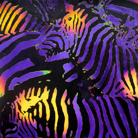 Piccole zebre viola - Olio su tela - 20x20