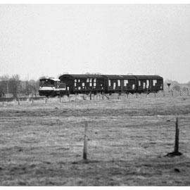 Der kleine Zug auf der Strecke Brand - Rothe-Erde