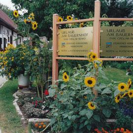 Einfahrt zum Bauernhof Cziglar-Benko Bad Radkersburg