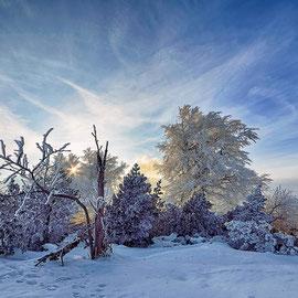 Winterlandschaft am Kamm