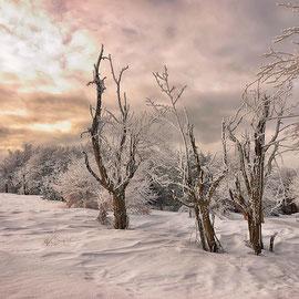 Frost am Erzgebirgskamm