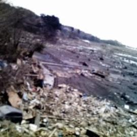 七ヶ浜・田圃の中の瓦礫