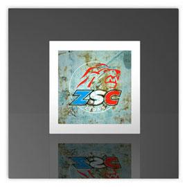 Würfelleuchte mit Motiv: ZSC Lions Logo an verwitterter grüner Wand