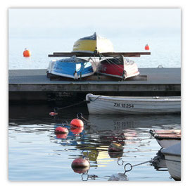 093b Ruderboote am Zürisee 012