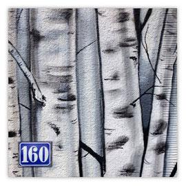 064b Birke 300