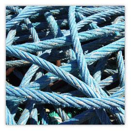 Tau blau 001