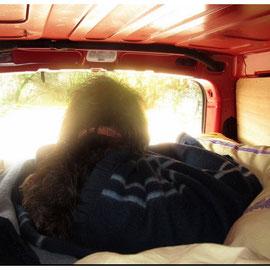 Au matin dans le fourgon