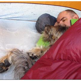 Sous la tente, et sous le duvet avec son maître !