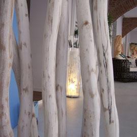 Natur, Paravent, Lichtdesign, Geschäft mit Gewölbe