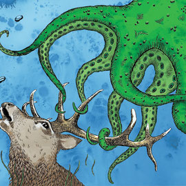 """""""Stag Octopus"""""""
