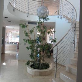 Bel escalier en colimaçon