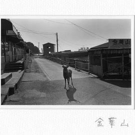 海町No.25
