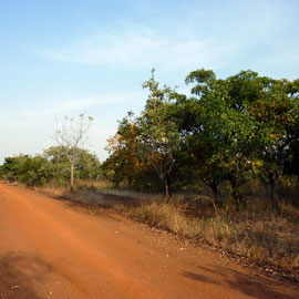 Arrivée au Burkina