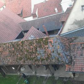 Die Dachlandschaft der Nebengebäude vor unserer Aktion.
