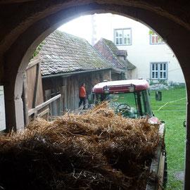 Das alte Stroh wurde auf Wägen verladen...
