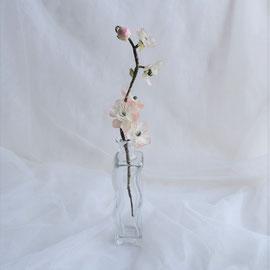 Glasvase in Wellenform mit Kirschblütenzweig