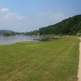 Weserradweg zwischen Polle und Bodenwerder