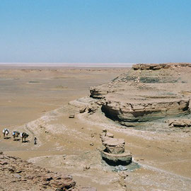 Dakhla Expedition
