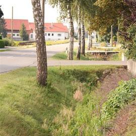 Entwässerungsgräben entlang der Straßen