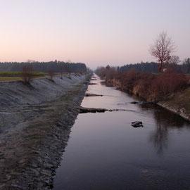 Der begradigte Unterlauf der Naarn - ein optimales Flussperlmuschelhabitat?