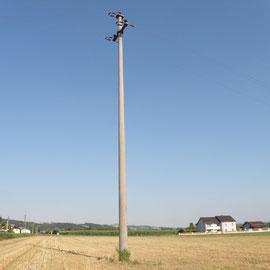Solche Stromasten sind oft ein Todesurteil für Großvögel Foto: Robert Gattringer