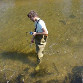 Gewässerökologe beim Messen des pH-Wertes in einem mühlviertler Perlmuschelgewässer.