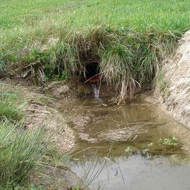 Über Drainagerohre kommt es zur Einschwemmung von Feinsedimenten.