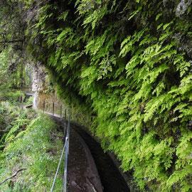 Enge Stellen folgen dem Wasserfall