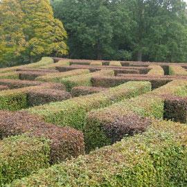 Das Labyrinth im Garten