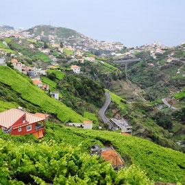 Und wieder ein sonniger Ausblick auf das Tal der Ribeira da Caixa