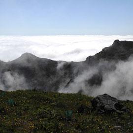 Der Nebel ist immer irgendwo - gefährlich, wer ihn ignoriert
