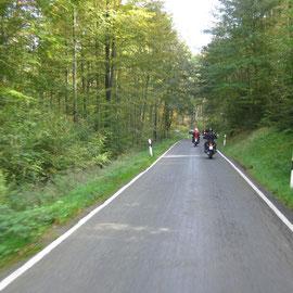 Und Wald gibt´s im Thüringer Wald bekanntlich auch