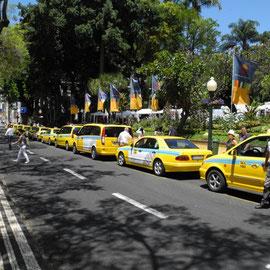 Jemand hat eine Dose Taxis aufgemacht