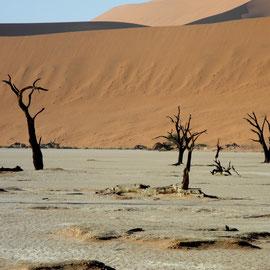 Eine supertolle Landschaft, vor allem durch die Farbe der Salzkruste auf der Erde und der eisenhaltigen Dünen