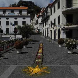 Ein Blumenteppich zieht sich durch ein Stück Straße