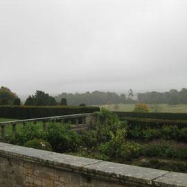 Einz9gartiger Blick von der Terrasse in die nicht bebaute Nachbarschaft