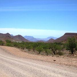 Aber dennoch eine schöne Umgebung, leichte Hügel und ab und an Kurven