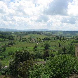 Die Landschaft ist noch unglaublich satt und grün im Mai und die kurvigen Strecken gehören ganz uns