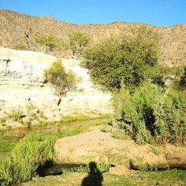 eine tolle Landschaft rund um den Hoanib-Fluss, der Wasser führt