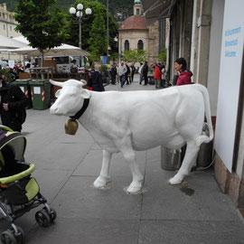 Für die Kinder gab es eine Menge über Milch zu erfahren