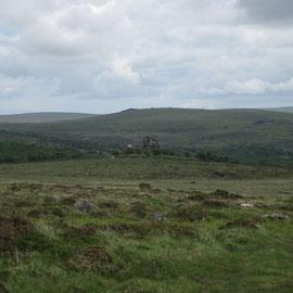 Exmoor - sagenhafte Landschaft mit freilaufenden Viechern