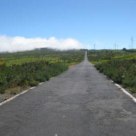 bis wir dann oben auf der Paul da Serra schon wieder den Nebel sehen