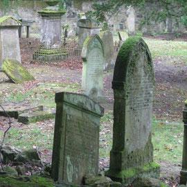 Jannis ist von der Grabpflege doch etwas enttäuscht
