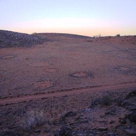 Die sagenumwobenen Feenkreise, die mit Feen nichts zu tun haben, dafür aber mit Termiten