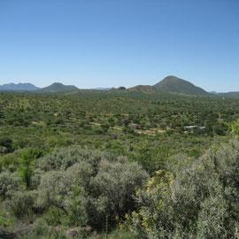 """Windhoek ist 2000 m hoch. Hier der Ausblick von Ralfs """"Terrasse"""""""