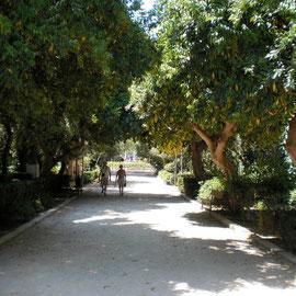 Park Rethymnon