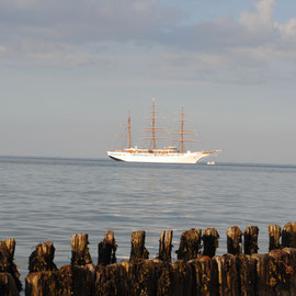 Sea Cloud II vor dem Lister Hafen