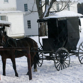 BUGGY VOR AMISH-FARM